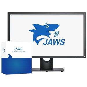 afbeelding van hulpmiddel <b>Jaws 17</b>, schermuitleessoftware; <i>Producent: Freedom Scientific USA/VFO Group</i>